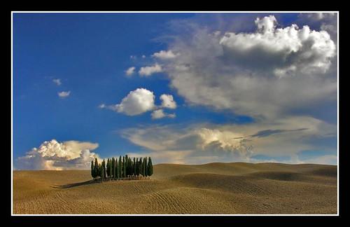 La soledad del Cipres(Toscana 2006) por josejoaquinmayayo.