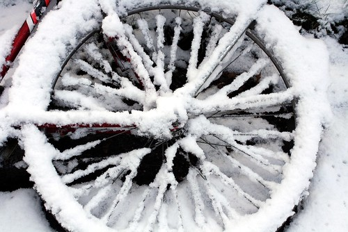 Winterwheel
