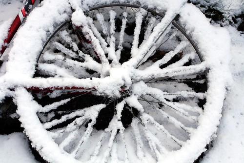 Winterwheel