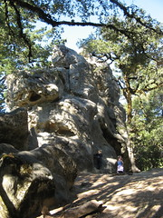 Castle Rock (San Lorenzo Park, California, United States) Photo