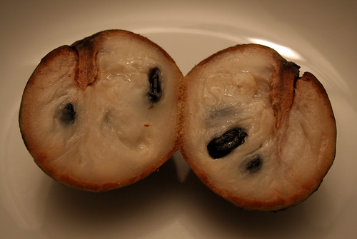 Custard Apple 1
