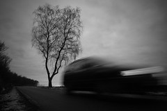 Status Quo (Hans van Reenen) Tags: auto autumn bw motion tree car germany deutschland fav50 fav20 unterwegs birch fav30 underway berk statusquo birke niederrhein arbolitos pkw fav10 kranenburg grafwegen fav40 grafwegenerstrasse fav60 gx100 20081125