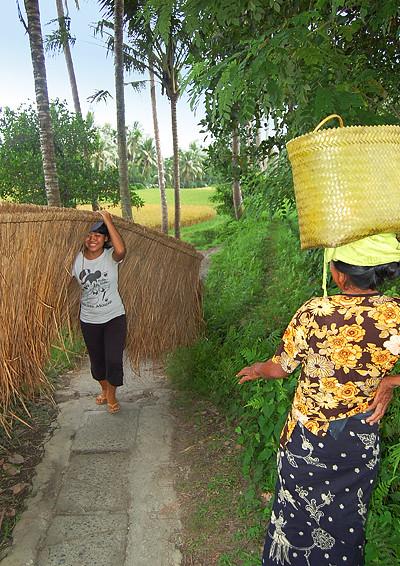 _Bali_rice_field_6_