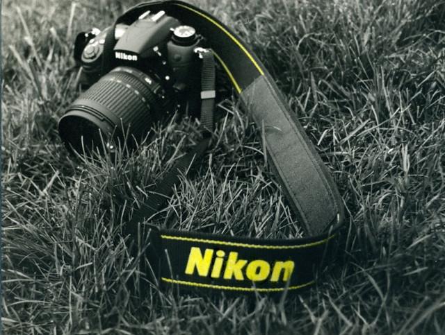'Nikon' Yellow