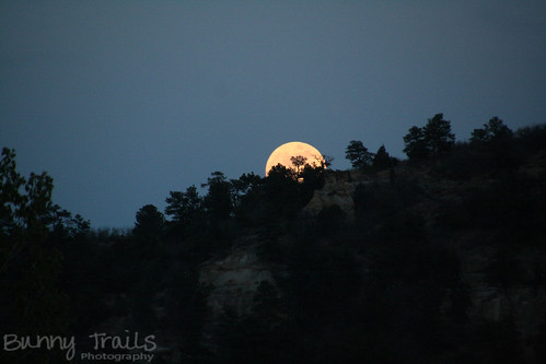 141-full moon