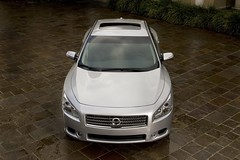 2009 nissan Maxima pictures 4