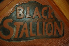 Wooden Door Logo. (Blackstallionhills.com) Tags: ranch door horses costa black art creative carving hills stallion