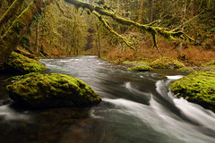 Abiqua Creek Study #2 (LiefPhotos) Tags: oregon pacificnorthwest creeks marioncounty fav10 diamondclassphotographer abiquacreek goldstaraward scenicsnotjustlandscapes