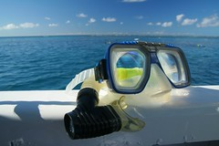 cairns_snorkeltrip_11