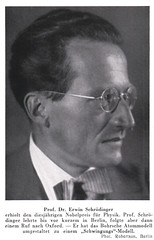 Portrait of Erwin Schrödinger (1887-1961), Physicist