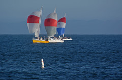With the wind (Damian Gadal) Tags: california santabarbara nikon nikond100 july nautical d100 sailboats 2007 j24 wetwednesday