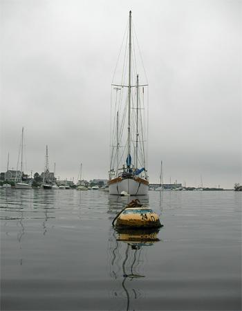 Falmouth Harbor Paddle... PAD #1185