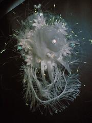 Diamond on Ice Hair Blossom (1) (Badia Ali) Tags: flower blossom blossoms accessories hairaccessories hairaccessory hairornament