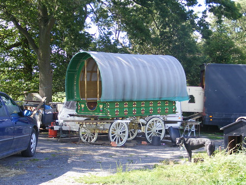 Beautiful Bling Shire Horses Ornate Romany Caravans And Dogs Holding Up Queues