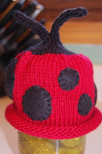 ladybug hat on pickles