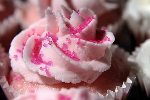 pink cupcake close-up