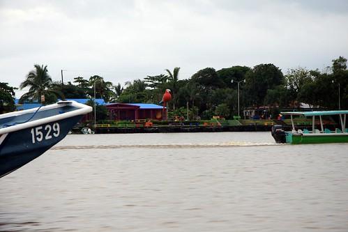 Costa Rica - Día 3 (154)