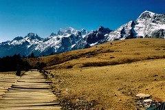 China Travel - Jade Dragon Snow Mountain, Yunnan  (Lao Wu Zei) Tags: china travel mountain snow dragon photos yunnan favourite      jade 850views maoniuping  enstnatane