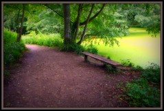Bench in a Country Park (bonksie61) Tags: park green canon bench path country harmony naturesbest bestofflickr loveis smrgsbord aclass naturesfinest digitalcameraclub allwelcome almostanything allin1 ysplix freenature anythingdigital allfromatoz unlimitedphotosnorules 0comments0 thisfeelsgood apeachofashot peachofashot