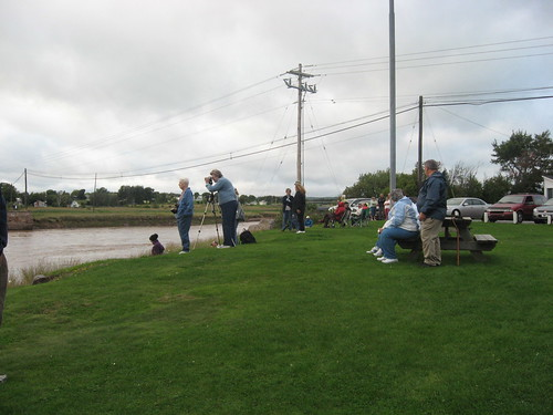 Gathered to See The Tidal Bore