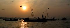 Floating on Vishnu's melody (Massala from Djé) Tags: india boats vishnu seagull religion bateaux spiritual bateau hinduism mouette ganga inde mela allahabad hindouisme ganje kumbhmela kumbh embarcation