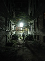 Alley Tree (historygradguy (jobhunting)) Tags: light urban building tree nature boston night ma alley shadows massachusetts newengland thumbsup mass allston twothumbsup bigmomma challengeyouwinner aplusphoto platinumheartaward herowinner