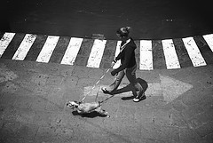 El mundo en contra / Against the world (eduardo.meza) Tags: blackandwhite bw woman dog blancoynegro against girl mexico mujer bn perro guanajuato arrow leash flecha correa