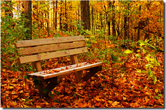 Have a Seat with Nature (nature55) Tags: autumn germantown nature leaves wisconsin bench nature55 impressedbeauty theunforgettablepictures