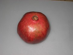Step 0: Start with a pomegranate. (11/11/2008)