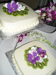 Orchid & Kiwi Cheesecakes