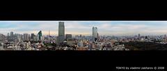 tokyo panorama (Vladimir Zakharov  ) Tags: japan tokyo 50mm14 tokyoview nohdr nikond80 tokyopanorama