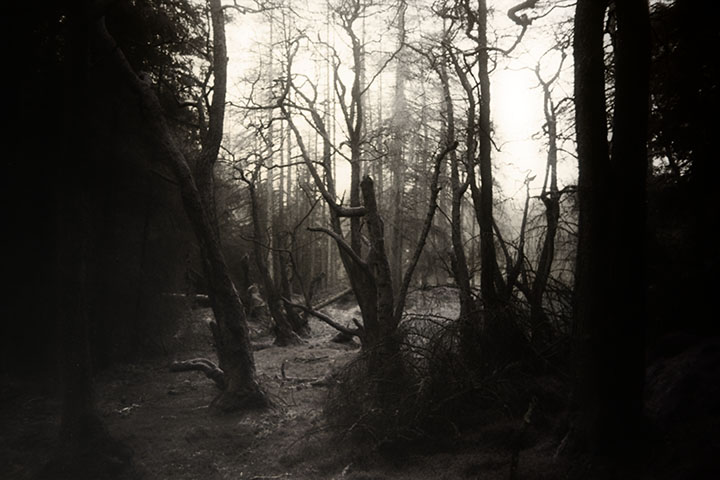 Photography - Artificial Road by Nicholas M Vivian