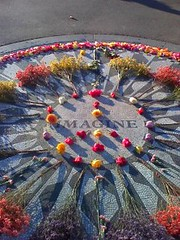Imagine Circle 250