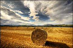 Fieno (manlio_k) Tags: shadow sky clouds scotland wheat harvest sigma hay bales 1020mm hdr manlio haybales castagna photomatix tonemapped manliocastagna manliok
