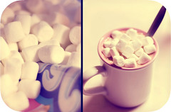 [24-365] it's just not hot cocoa without the marshmallows... (courtney  jade) Tags: christmas old pink portland nikon warm retro marshmallows 2008 ohwell hotcocoa dyptich jetpuffed d80 didispellthatright courtneyjade