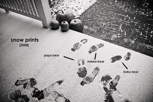 snowprints2008_blog