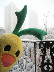 Morot in the snow! (Spok-spok) Tags: urban newyork cute smile fun toy happy design cool soft sweet sweden designer vinyl swedish plush softie cuddly kawaii carrot plushie giggling spok morot designertoy designerplush spoks spokspok toofhairy spökspök spökelina