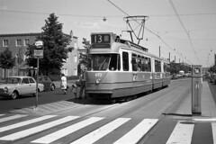 Who needs a zebra crossing? (railfan3) Tags: old 1969 amsterdam crossing tram streetscene zebra 13 oldtimers trams oude trolleys grijs gvb alte street