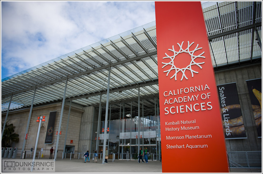California Academy of Sciences, San Francisco.