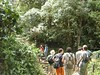 Quetzal's Trail Guided Hiking Tour (Habla Ya Spanish Courses & Tours in Panama) Tags: hikes quetzal quetzals