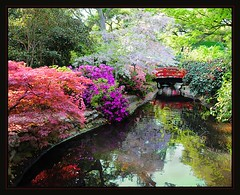 Quiet moods (Light_Rider) Tags: california bridge pink flowers trees red nature water colors beautiful japan gardens reflections garden landscape japanese spring concert pond colorful superb peaceful blooms lovelovelove lovely moods naturesbest masterpiece descanso aclass tranquill lacanada artofnature anawesomeshot favoritegarden superbmasterpiece freenature exemplaryshots naturewatcher excapture ashotadayorso nikond300 goldstaraward thebestpicturegallery nikkor1685 llovemypics flickrlovers