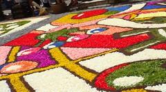 Another piece of colour (elena_cybershot) Tags: flowers italy rome roma italia colours fiori colori lazio naturalmente infiorata castelliromani genzano sonycybershott2