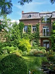 Wottahouse (asmorod) Tags: blue house plant france color green home architecture plante garden bush kodak jardin vert bleu maison foyer couleur dx7590 buisson maroilles