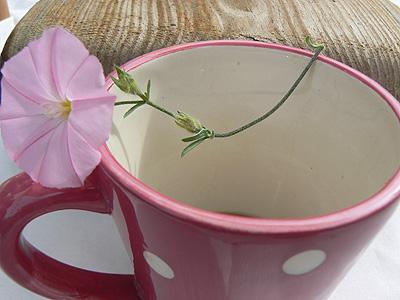 petit déjeuner fleuri.jpg