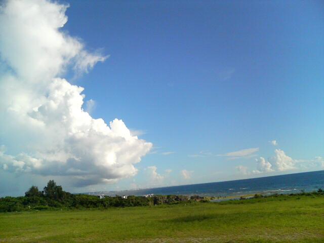 今日は高い雲が多い。