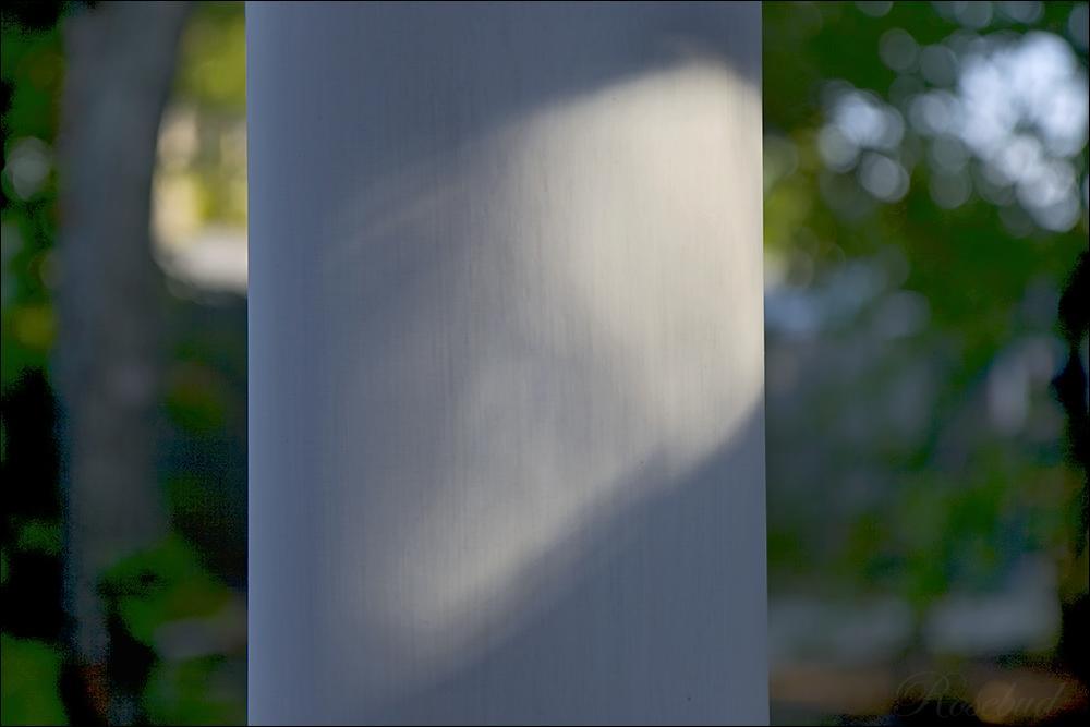 white column ©2008 RosebudPenfold