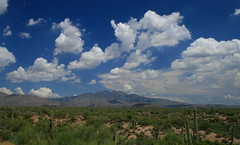 Patriarchs of the Northeast Sky (BCooner) Tags: arizona mountains clouds cacti landscapes desert saguaro fourpeaks circularpolarizingfilter