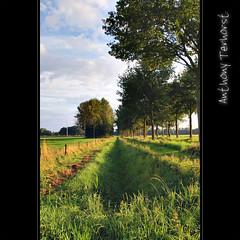 127 - Dutch landscape (Ton Terhorst) Tags: trees holland tree art nature netherlands clouds bomen ditch nederland natuur wolken anthony alpha greppel terhorst sonyalpha sonydslra200 dslra200 alpha200 alphadslra200 anthonyterhorst anthony68 tonterhorst ton180468 art181968 atphotografie wwwanthonyterhorstnl