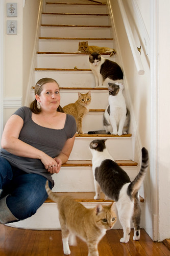 crazy cat lady? (365.270)