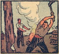 abatage arbre